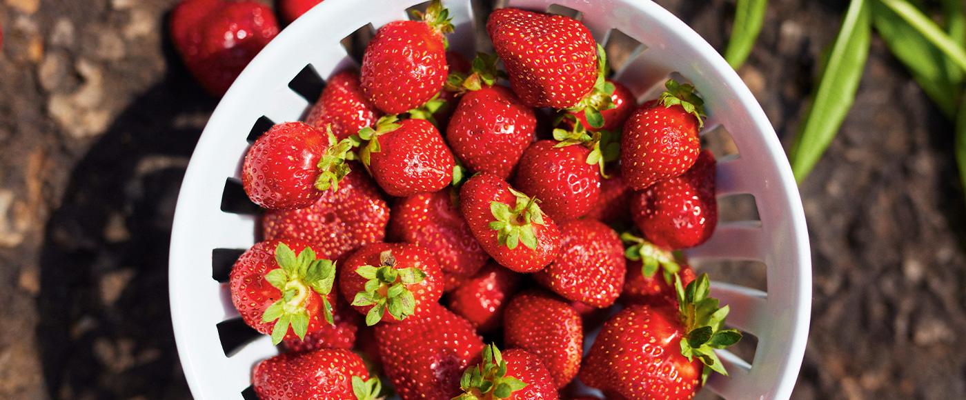 10 faits sur les fraises