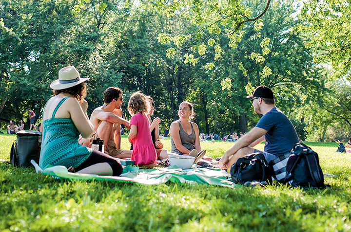 6 Tips for an Unforgettable Picnic