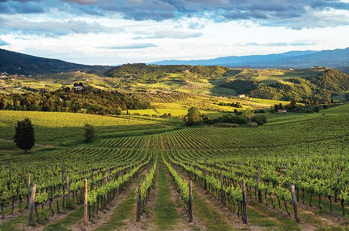 11 adresses gourmandes à découvrir en Toscane