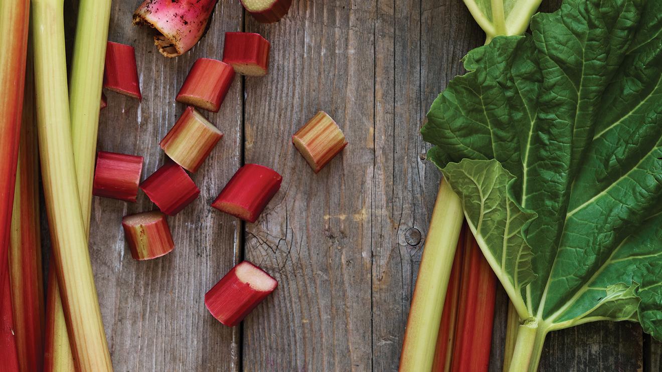 4 façons d'utiliser vos restes de rhubarbe