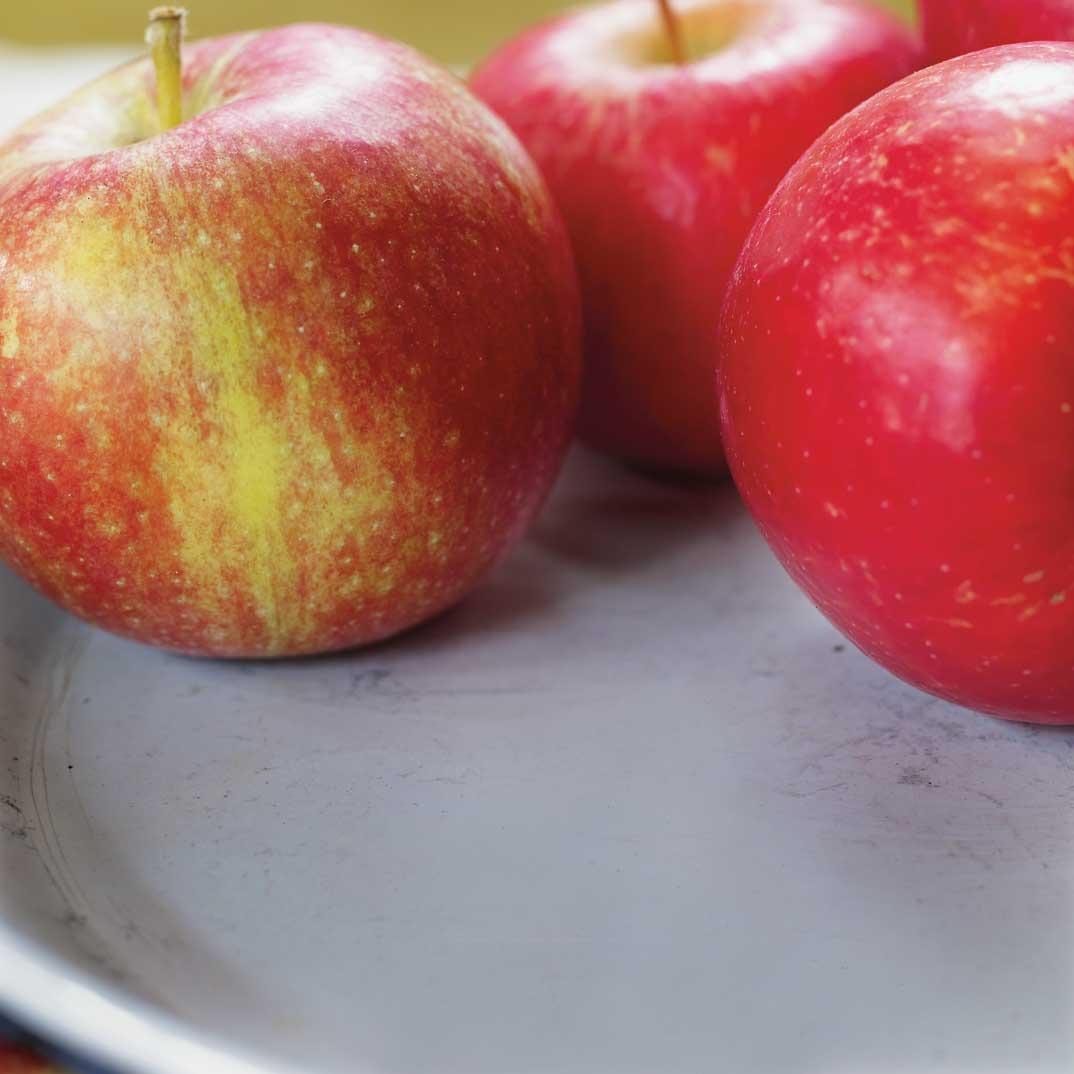 Tarte rustique aux pommes, aux poires et aux dattes