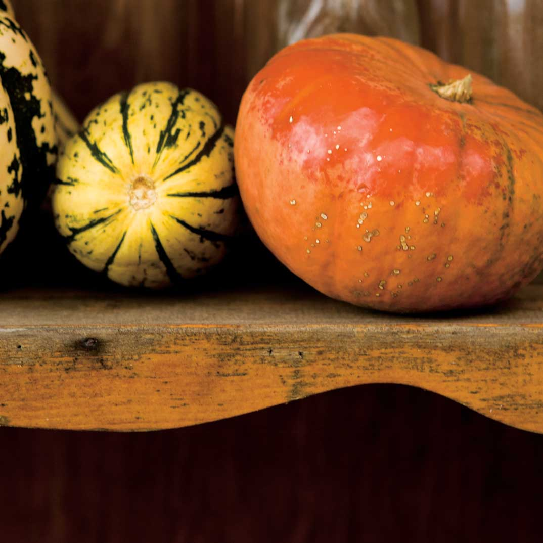 Pumpkin and Veal Ravioli