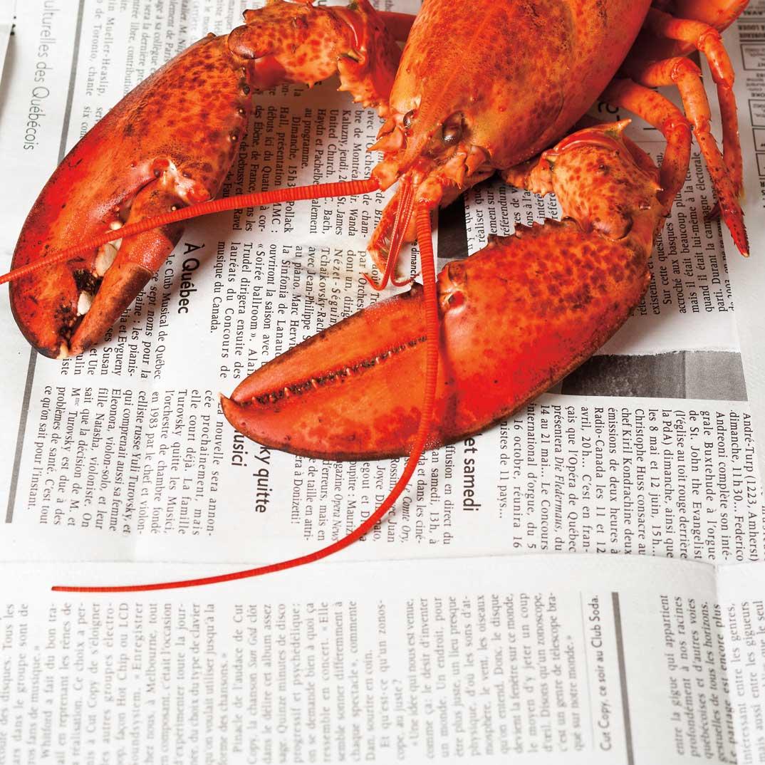 Cari de homard