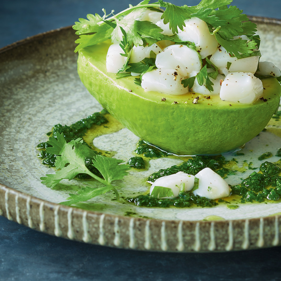 Avocados Stuffed with Scallop Ceviche
