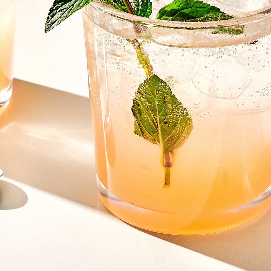 Mint and Citrus Gin Fizz