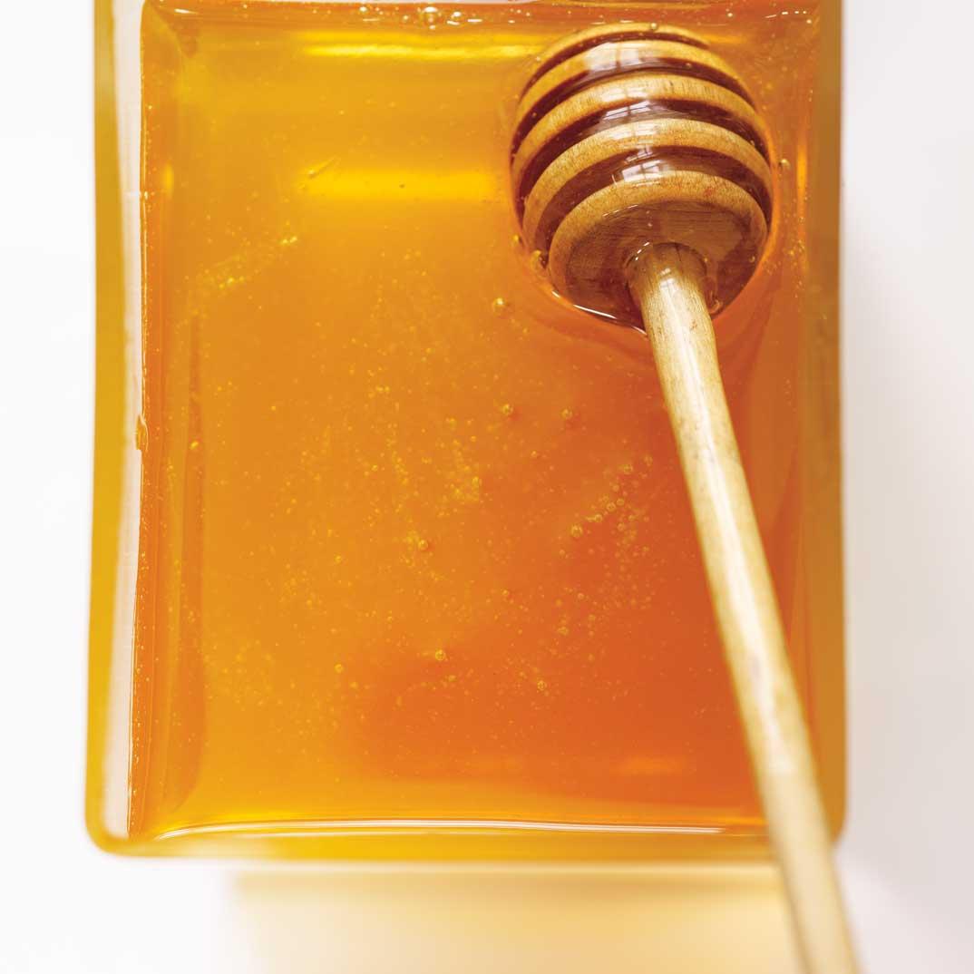 Lamb Shanks Glazed with Buckwheat Honey