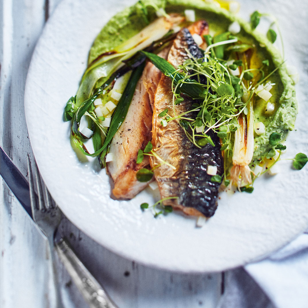 Seared Mackerel with Celeriac and Green Onion Purée
