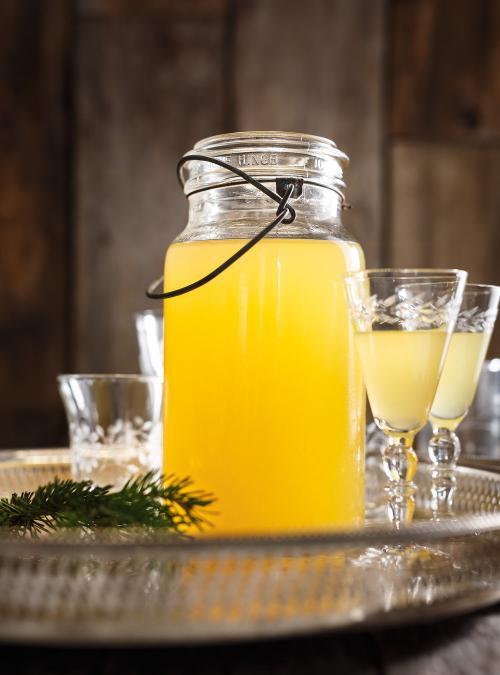 Citrus Vodka