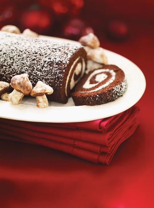 Chocolate and Mascarpone Yule Log