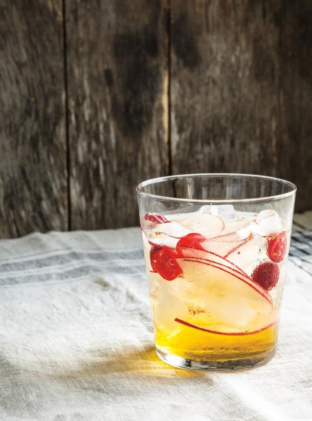 Photo Cranberry-Apple Cider Drink