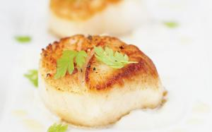 Brown Scallops Like a Pro