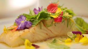 Flétan de l'Atlantique, sauce gribiche aux boutons de marguerites et salade d'herbes et de fleurs