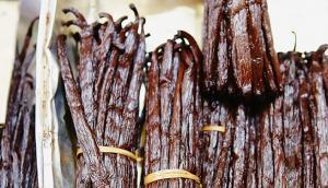 Marché de Fort-de-France : la vanille fraîche