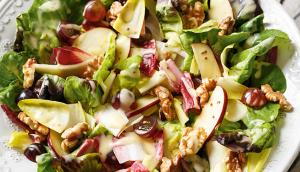 Boston Lettuce and Endive Salad