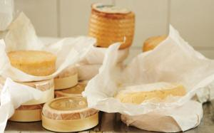 Conservation des fromages