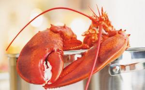 Cuire un homard
