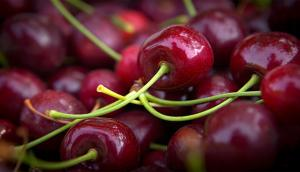 Sweet Cherries from the Okanagan Valley