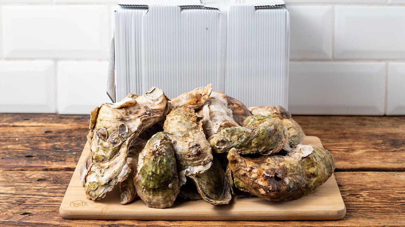 Huîtres sauvages choisies Five Stars Shellfish